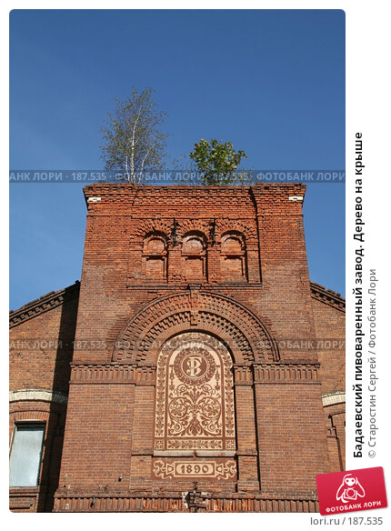 Бадаевский пивоваренный завод. Дерево на крыше, фото № 187535, снято 2 октября 2007 г. (c) Старостин Сергей / Фотобанк Лори