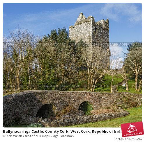 Ballynacarriga Castle, County Cork, West Cork, Republic of Ireland... Стоковое фото, фотограф Ken Welsh / age Fotostock / Фотобанк Лори