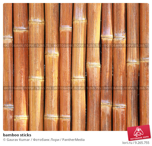 bamboo sticks Get listings of bamboo sticks, bamboo sticks suppliers, manufacturers, dealers, traders and exporters browse bamboo sticks price, specification, ratings and reviews at one place.