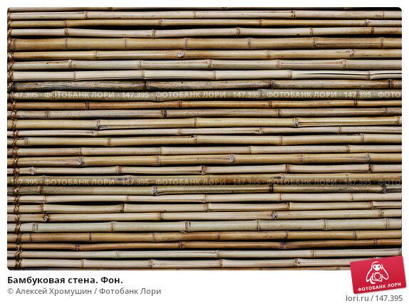 Купить «Бамбуковая стена. Фон.», фото № 147395, снято 10 июля 2007 г. (c) Алексей Хромушин / Фотобанк Лори