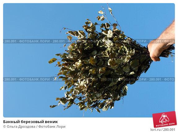 Банный березовый веник, фото № 280091, снято 15 января 2005 г. (c) Ольга Дроздова / Фотобанк Лори