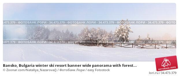 Bansko, Bulgaria winter ski resort banner wide panorama with forest... Стоковое фото, фотограф Zoonar.com/Nataliya_Nazarova{} / easy Fotostock / Фотобанк Лори