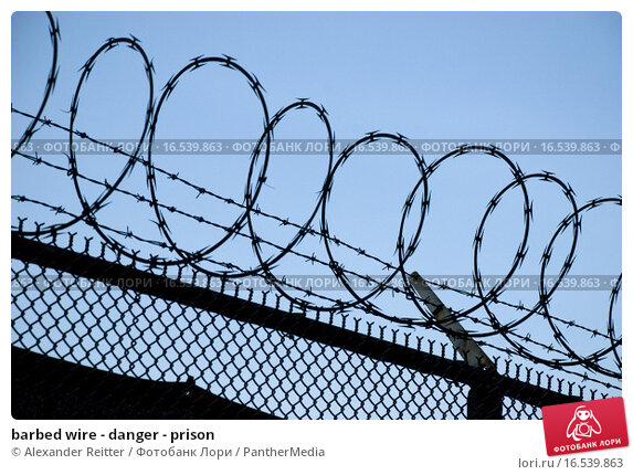 Купить «barbed wire - danger - prison», фото № 16539863, снято 21 марта 2019 г. (c) PantherMedia / Фотобанк Лори