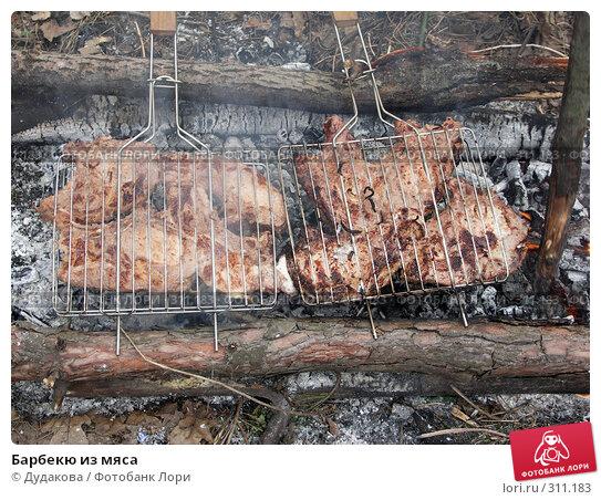 Барбекю из мяса, фото № 311183, снято 15 апреля 2006 г. (c) Дудакова / Фотобанк Лори