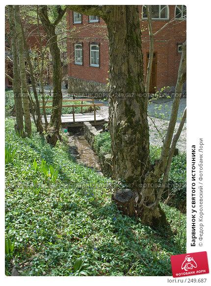Барвинок у святого источника, фото № 249687, снято 12 апреля 2008 г. (c) Федор Королевский / Фотобанк Лори