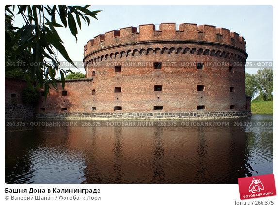Купить «Башня Дона в Калининграде», фото № 266375, снято 22 июля 2007 г. (c) Валерий Шанин / Фотобанк Лори