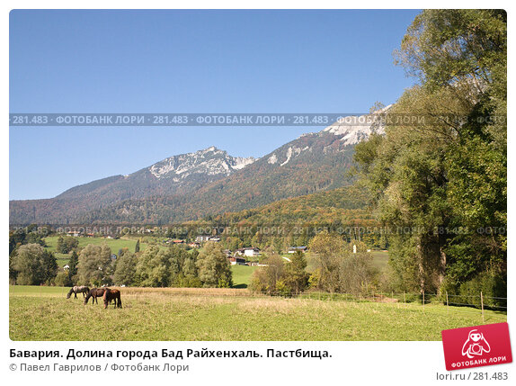 Купить «Бавария. Долина города Бад Райхенхаль. Пастбища.», фото № 281483, снято 16 октября 2005 г. (c) Павел Гаврилов / Фотобанк Лори