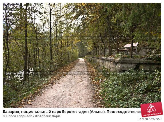 Бавария, национальный парк Берхтесгаден (Альпы). Пешеходно-велосипедные тропинки. Осень., фото № 292959, снято 20 октября 2005 г. (c) Павел Гаврилов / Фотобанк Лори