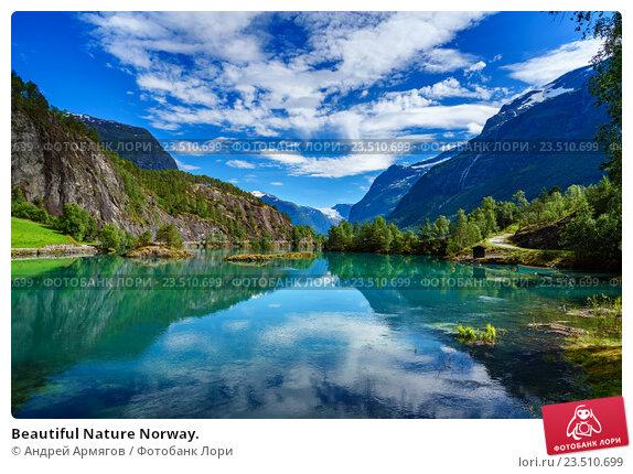 Купить «Beautiful Nature Norway.», фото № 23510699, снято 24 июля 2016 г. (c) Андрей Армягов / Фотобанк Лори