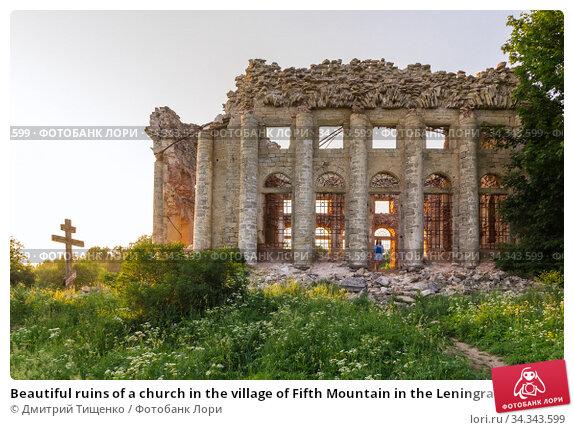 Beautiful ruins of a church in the village of Fifth Mountain in the Leningrad region. Стоковое фото, фотограф Дмитрий Тищенко / Фотобанк Лори