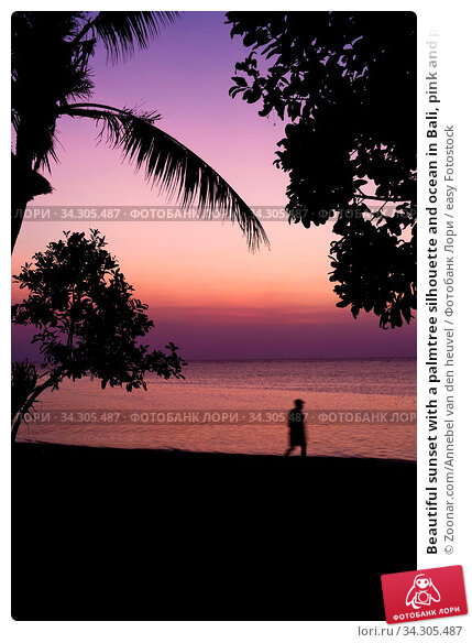 Beautiful sunset with a palmtree silhouette and ocean in Bali, pink and purple colors landscape nature person hiking. Стоковое фото, фотограф Zoonar.com/Annebel van den heuvel / easy Fotostock / Фотобанк Лори