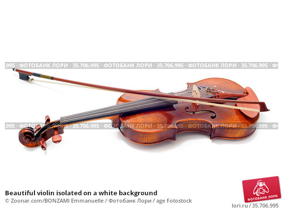 Beautiful violin isolated on a white background. Стоковое фото, фотограф Zoonar.com/BONZAMI Emmanuelle / age Fotostock / Фотобанк Лори