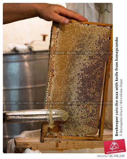 Купить «Beekeeper cuts the wax with knife from honeycombs», фото № 26745235, снято 7 августа 2017 г. (c) Володина Ольга / Фотобанк Лори