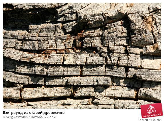 Бэкграунд из старой древесины, фото № 134783, снято 15 августа 2006 г. (c) Serg Zastavkin / Фотобанк Лори