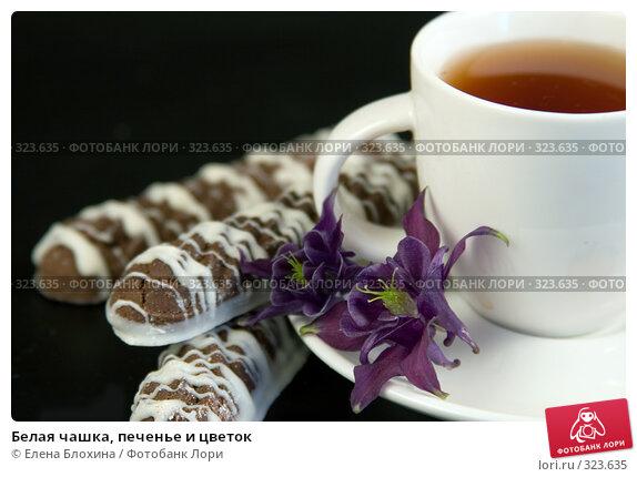 Купить «Белая чашка, печенье и цветок», фото № 323635, снято 7 июня 2008 г. (c) Елена Блохина / Фотобанк Лори