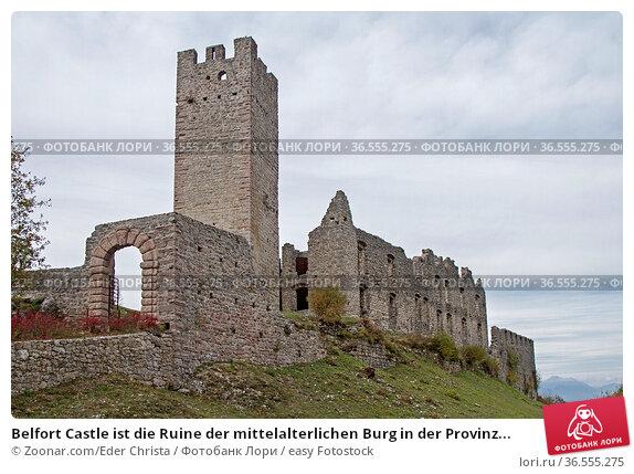 Belfort Castle ist die Ruine der mittelalterlichen Burg in der Provinz... Стоковое фото, фотограф Zoonar.com/Eder Christa / easy Fotostock / Фотобанк Лори