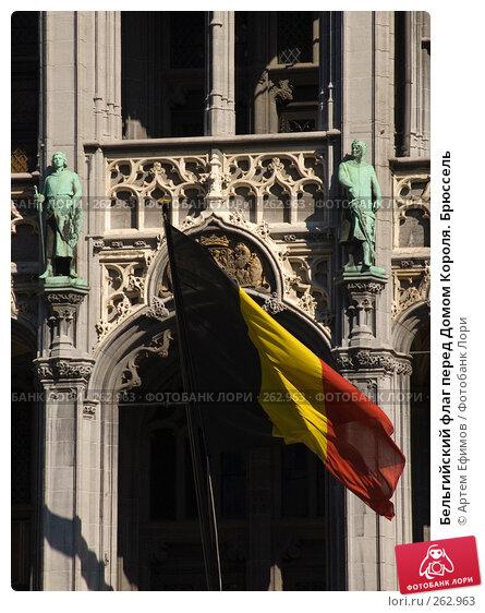 Бельгийский флаг перед Домом Короля. Брюссель, фото № 262963, снято 6 октября 2007 г. (c) Артем Ефимов / Фотобанк Лори