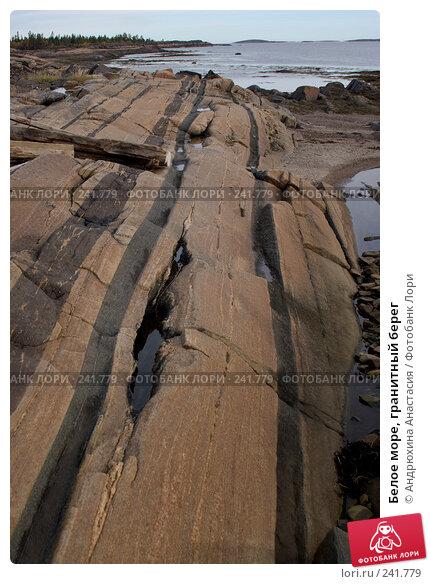 Купить «Белое море, гранитный берег», фото № 241779, снято 24 сентября 2007 г. (c) Андрюхина Анастасия / Фотобанк Лори