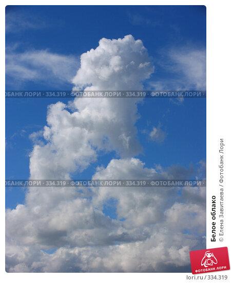 Белое облако, фото № 334319, снято 25 июня 2008 г. (c) Елена Завитаева / Фотобанк Лори