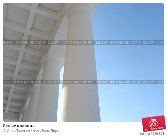 Купить «Белые колонны», фото № 229871, снято 16 марта 2008 г. (c) Илья Телегин / Фотобанк Лори