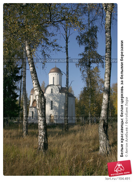 Белые красавицы: белая церковь за белыми березами, фото № 104491, снято 27 февраля 2017 г. (c) Антон Алябьев / Фотобанк Лори