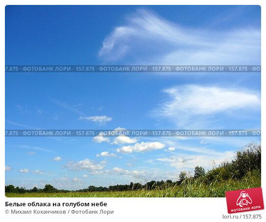 Белые облака на голубом небе, фото № 157875, снято 11 августа 2007 г. (c) Михаил Коханчиков / Фотобанк Лори