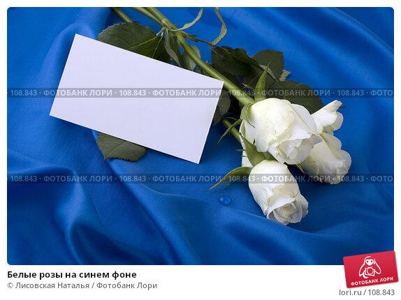 Белые розы на синем фоне, фото № 108843, снято 2 ноября 2007 г. (c) Лисовская Наталья / Фотобанк Лори