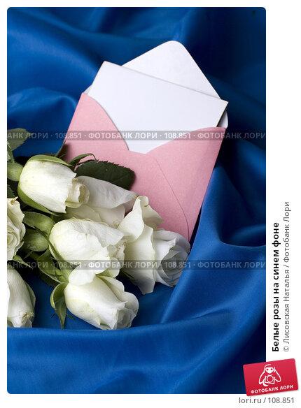 Белые розы на синем фоне, фото № 108851, снято 2 ноября 2007 г. (c) Лисовская Наталья / Фотобанк Лори