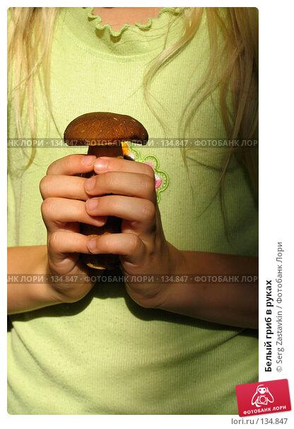 Белый гриб в руках, фото № 134847, снято 30 июля 2005 г. (c) Serg Zastavkin / Фотобанк Лори