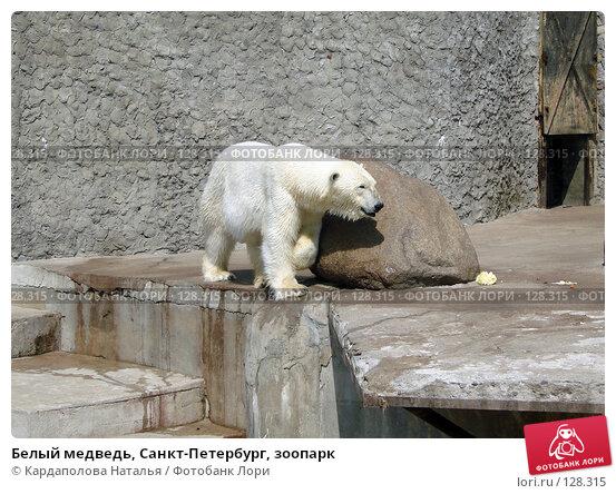 Купить «Белый медведь, Санкт-Петербург, зоопарк», фото № 128315, снято 30 мая 2007 г. (c) Кардаполова Наталья / Фотобанк Лори