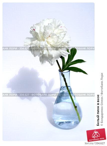 Белый пион в вазе, фото № 334627, снято 25 июня 2008 г. (c) Бондаренко Олеся / Фотобанк Лори