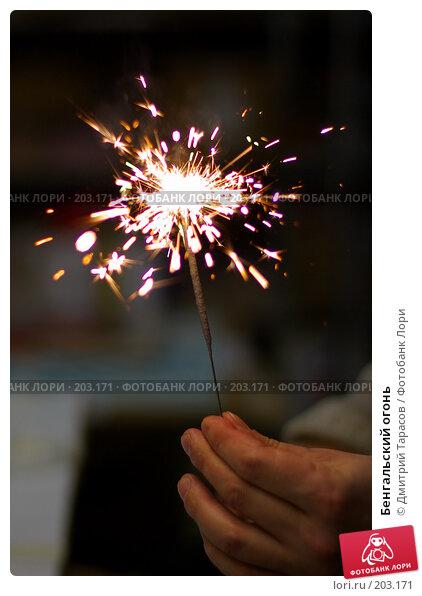 Бенгальский огонь, фото № 203171, снято 28 декабря 2007 г. (c) Дмитрий Тарасов / Фотобанк Лори