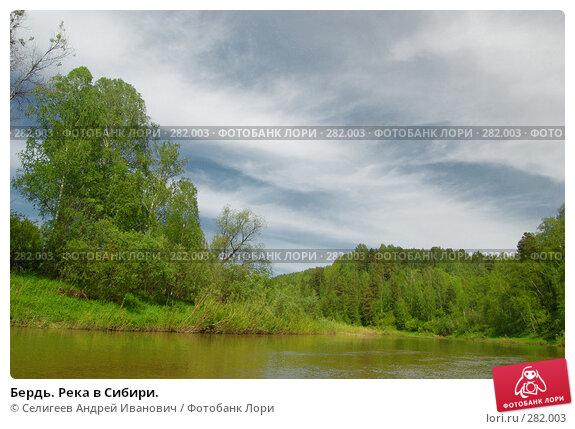 Бердь. Река в Сибири., фото № 282003, снято 10 июня 2007 г. (c) Селигеев Андрей Иванович / Фотобанк Лори