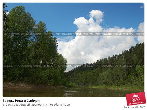 Бердь. Река в Сибири, фото № 288927, снято 11 июня 2007 г. (c) Селигеев Андрей Иванович / Фотобанк Лори