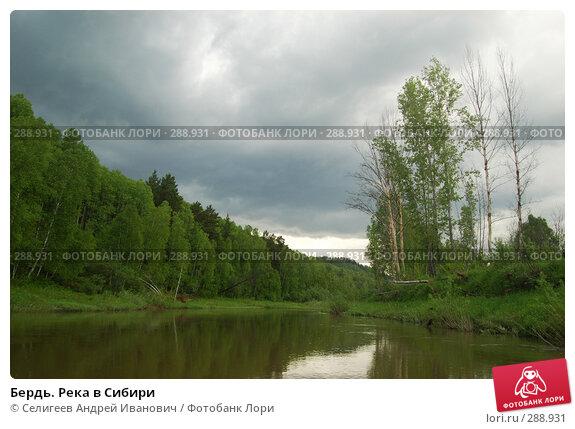 Бердь. Река в Сибири, фото № 288931, снято 11 июня 2007 г. (c) Селигеев Андрей Иванович / Фотобанк Лори