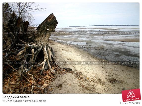 Бердский залив, фото № 204399, снято 17 апреля 2004 г. (c) Олег Кугаев / Фотобанк Лори