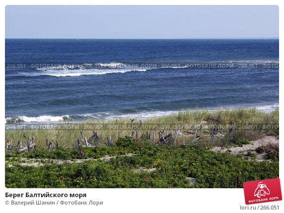 Берег Балтийского моря, фото № 266051, снято 23 июля 2007 г. (c) Валерий Шанин / Фотобанк Лори