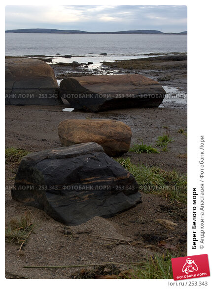 Берег Белого моря, фото № 253343, снято 24 сентября 2007 г. (c) Андрюхина Анастасия / Фотобанк Лори