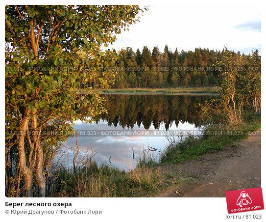 Берег лесного озера, фото № 81023, снято 8 сентября 2007 г. (c) Юрий Драгунов / Фотобанк Лори