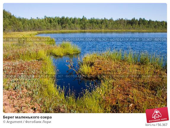 Берег маленького озера, фото № 56367, снято 10 августа 2006 г. (c) Argument / Фотобанк Лори