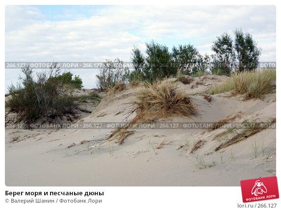Берег моря и песчаные дюны, фото № 266127, снято 23 июля 2007 г. (c) Валерий Шанин / Фотобанк Лори