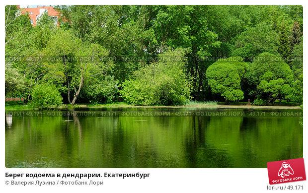 Берег водоема в дендрарии. Екатеринбург, фото № 49171, снято 1 июня 2007 г. (c) Валерия Потапова / Фотобанк Лори