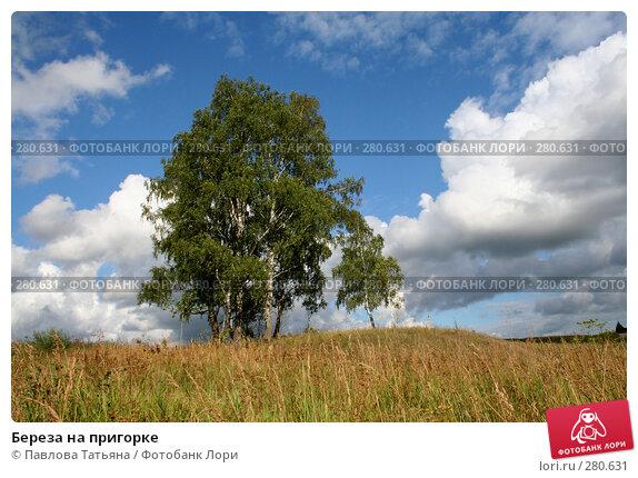 Береза на пригорке, фото № 280631, снято 14 июля 2007 г. (c) Павлова Татьяна / Фотобанк Лори