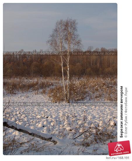 Березки зимним вечером, фото № 168191, снято 5 января 2008 г. (c) Олег Рубик / Фотобанк Лори