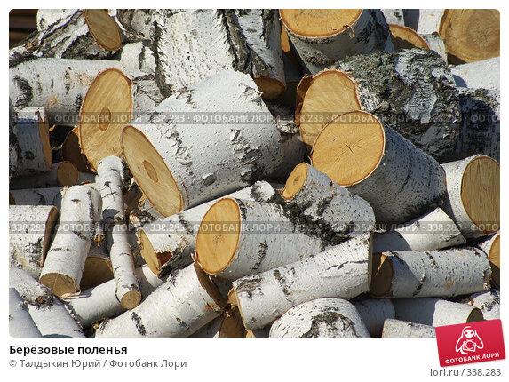 Берёзовые поленья, фото № 338283, снято 18 июня 2008 г. (c) Талдыкин Юрий / Фотобанк Лори