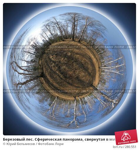 Березовый лес. Сферическая панорама, свернутая в минипланету, фото № 280551, снято 23 марта 2017 г. (c) Юрий Бельмесов / Фотобанк Лори