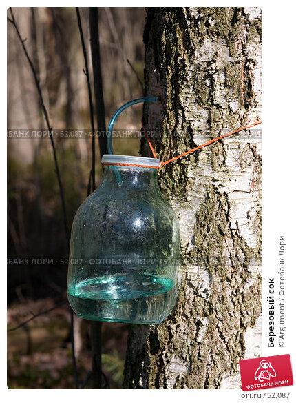 Березовый сок, фото № 52087, снято 1 апреля 2007 г. (c) Argument / Фотобанк Лори