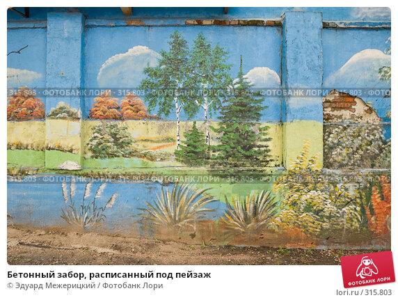 Бетонный забор, расписанный под пейзаж, фото № 315803, снято 7 июня 2008 г. (c) Эдуард Межерицкий / Фотобанк Лори