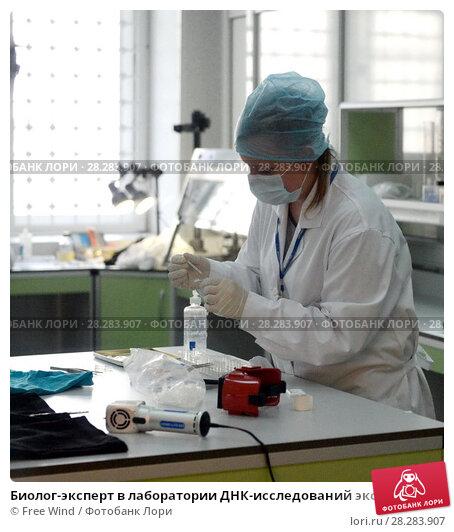 Биолог-эксперт в лаборатории ДНК-исследований экспертно-криминалистического центра московской полиции (2016 год). Редакционное фото, фотограф Free Wind / Фотобанк Лори