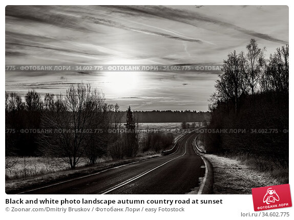 Black and white photo landscape autumn country road at sunset. Стоковое фото, фотограф Zoonar.com/Dmitriy Bruskov / easy Fotostock / Фотобанк Лори